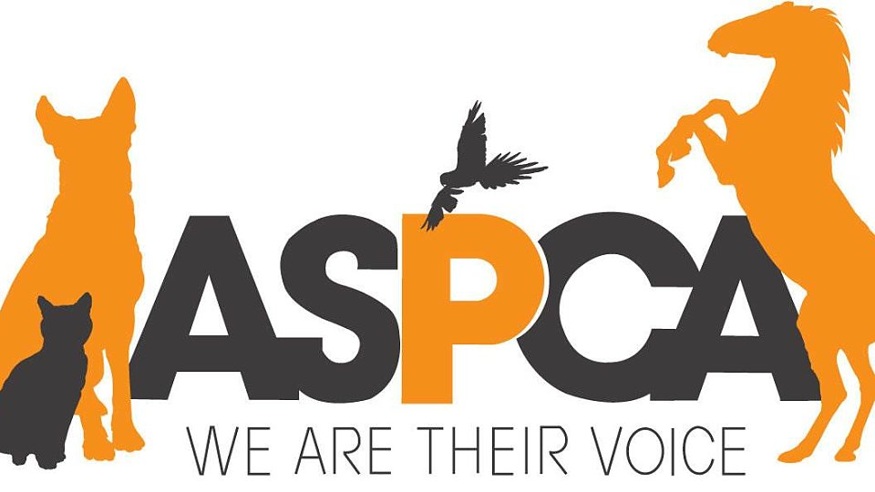 breathtaking aspca logo 63 for your logo with aspca logo